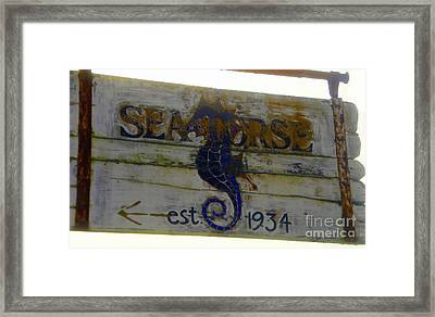 Seahorse Est. 1934 Framed Print by David Lee Thompson