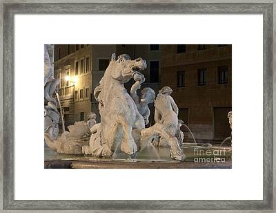 Seahorse Framed Print by Fabrizio Ruggeri