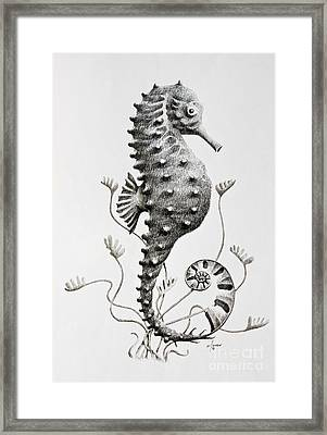 Seahorse  Framed Print by James Williamson