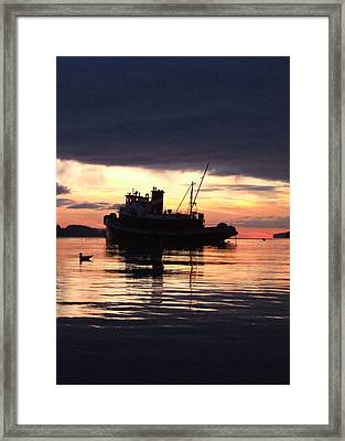 Seahorse Framed Print by Mark Alan Perry