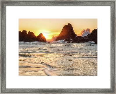 Seal Rock  Framed Print