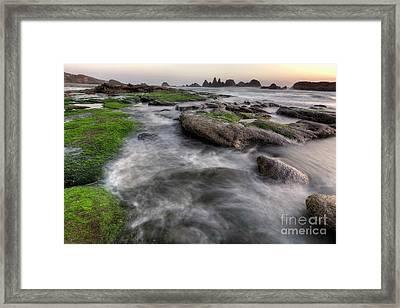 Seal Rock State Park At Sunset Framed Print by Masako Metz