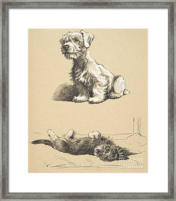 Sealyham And Rough Dachund Puppy, 1930 Framed Print