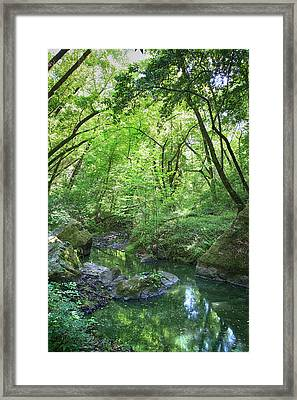 Search Your Heart Framed Print