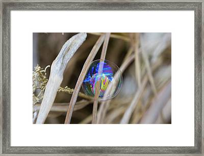 Searching For A New Rainbow Framed Print