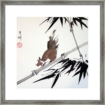 Searching For Food Framed Print by Ming Yeung