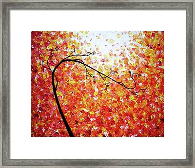 Searching For Serenity Framed Print by Daniel Lafferty