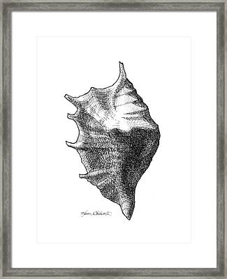 Seashell 1 - Nautical Beach Drawing Framed Print by Karen Whitworth