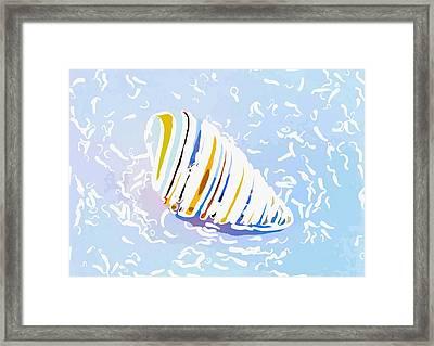 Seashell 2 Framed Print