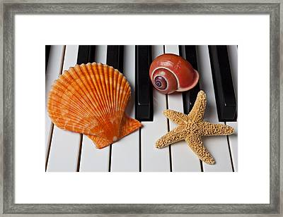 Seashell And Starfish On Piano Framed Print