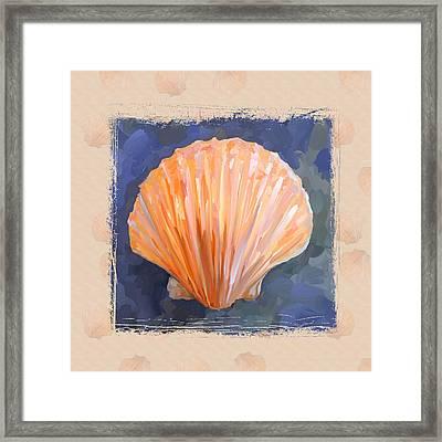 Seashell I Grunge With Border Framed Print by Jai Johnson