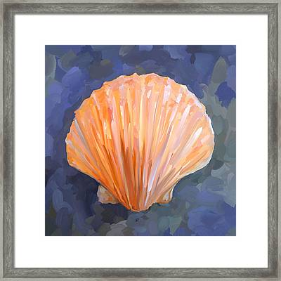 Seashell I Framed Print by Jai Johnson