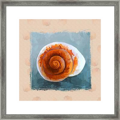 Seashell II Grunge With Border Framed Print by Jai Johnson