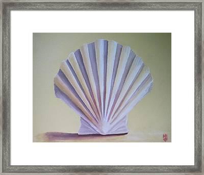 Seashell II Framed Print by Michael Holmes