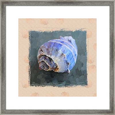 Seashell IIi Grunge With Border Framed Print by Jai Johnson
