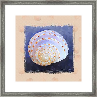 Seashell Iv Grunge With Border Framed Print by Jai Johnson