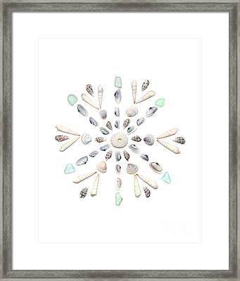 Seashell Snowflake 2 Framed Print by Jennifer Booher