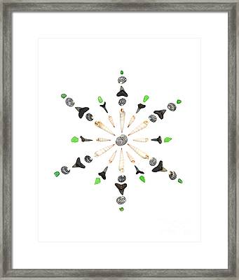 Seashell Snowflake 6 Framed Print by Jennifer Booher