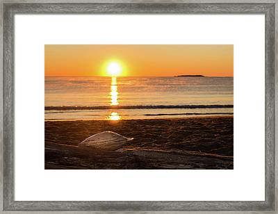 Framed Print featuring the photograph Seashell Sunrise by Kirkodd Photography Of New England