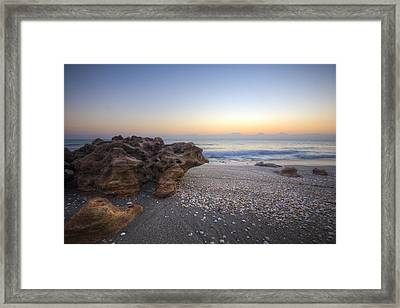 Seashells At The Seashore Framed Print by Debra and Dave Vanderlaan