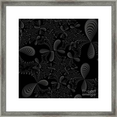 Seashells Framed Print by Candice Danielle Hughes