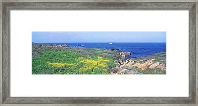 Seashore Along Highway 1 In Spring Framed Print by Panoramic Images