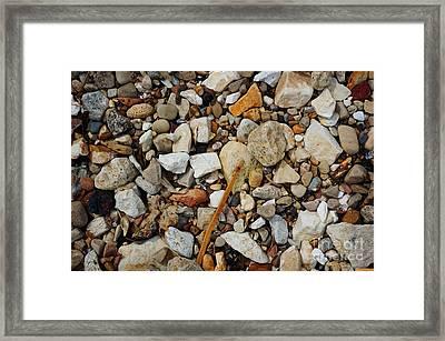 Seashore Pebbles  Framed Print