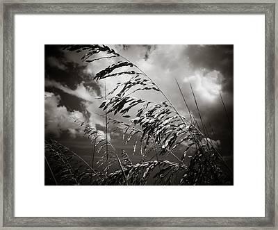 Seaside Framed Print by Jessica Brawley