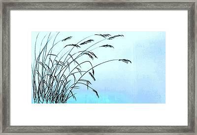 Seaside Oats 2 Framed Print by Hae Kim