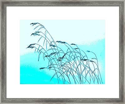 Seaside Oats Framed Print by Hae Kim