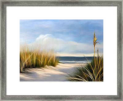 Seaside Path Framed Print by Anthony Fishburne