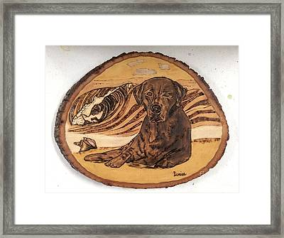 Framed Print featuring the pyrography Seaside Sam by Denise Tomasura