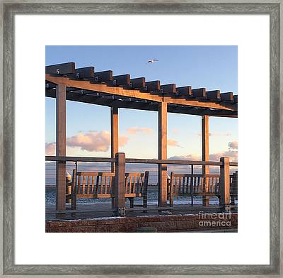 Seaside Seating  Framed Print