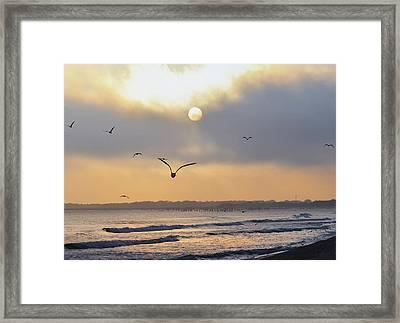 Seaside Sunrise Framed Print