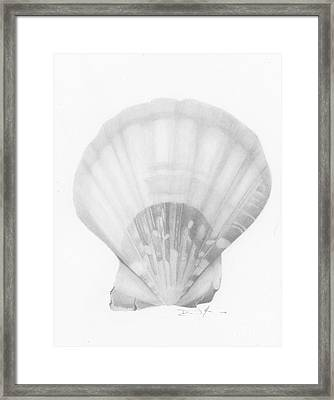 Seaside Treasure Framed Print