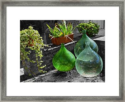 Season For Growth Framed Print