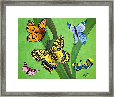 Season Of Butterflies Framed Print by Donna Blossom
