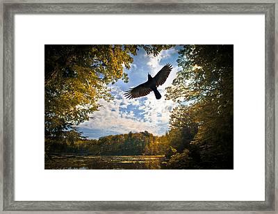 Season Of Change Framed Print by Bob Orsillo