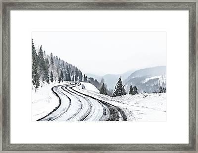 Season Of Serpents Framed Print
