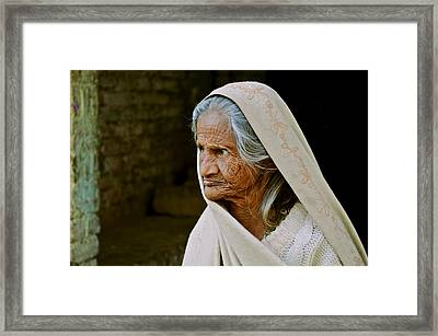 Seasoned Elegance Framed Print