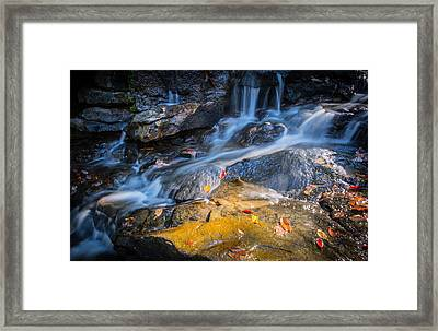 Seasons Collide Framed Print