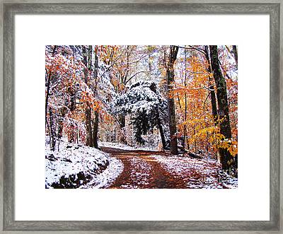 Seasons Cross Framed Print