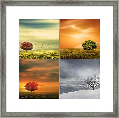Seasons' Delight Framed Print by Lourry Legarde