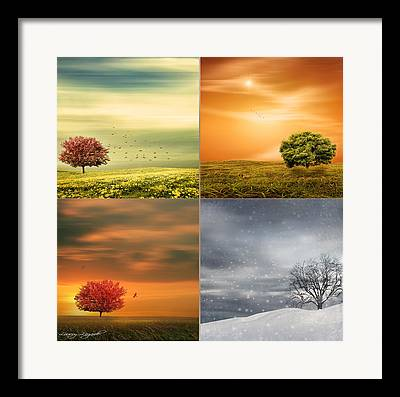 Equinox Framed Prints