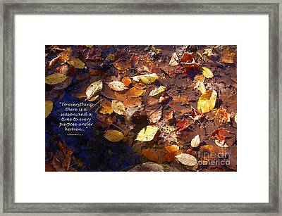 Framed Print featuring the photograph Seasons by Diane E Berry