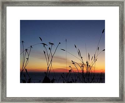 Seasons End Framed Print
