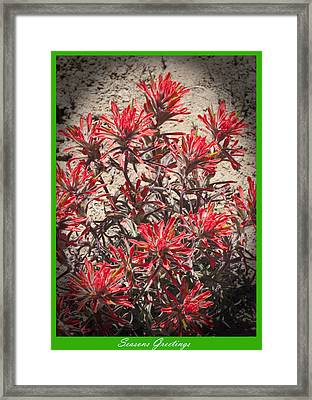 Seasons Greetings 2010 Framed Print