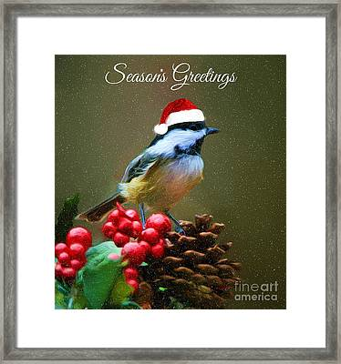 Seasons Greetings Chickadee Framed Print by Tina LeCour