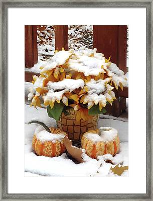 Seasons Meet And Greet					 Framed Print by Ann Johndro-Collins