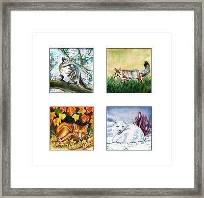 Seasons Of Fox Framed Print by Antony Galbraith